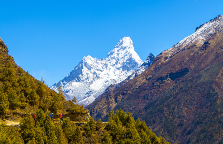 National Park in Nepal and Entrance fee to Visit