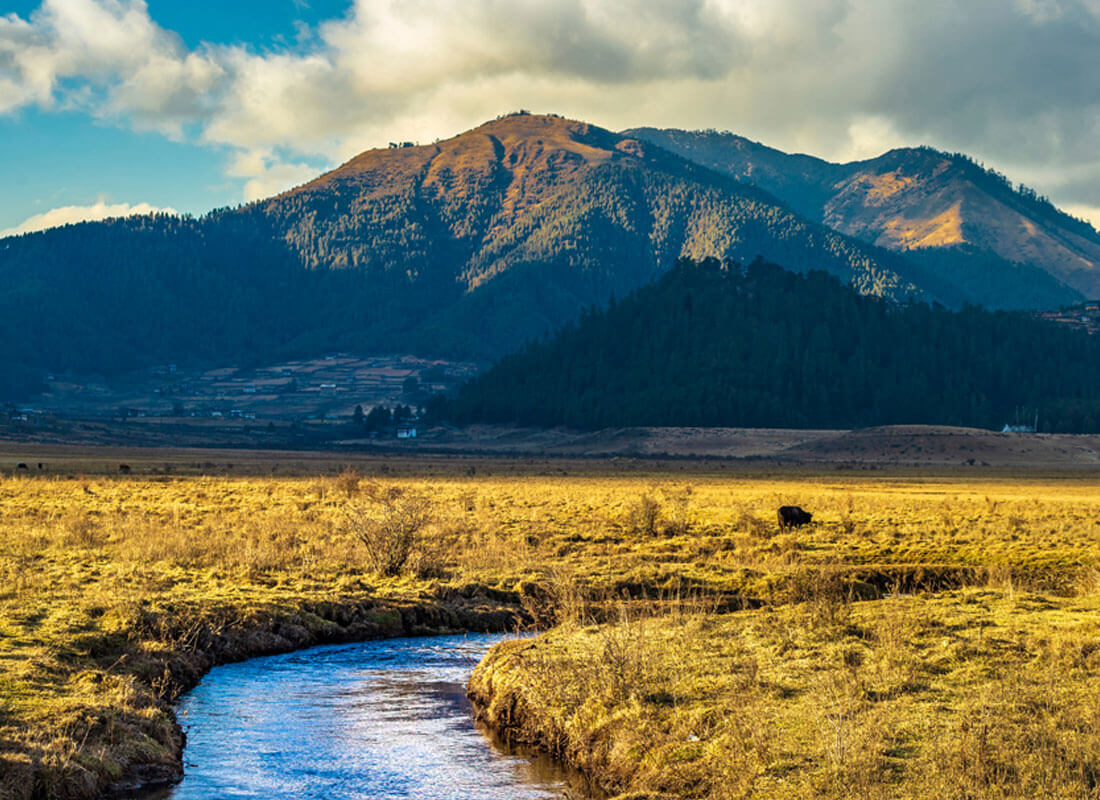 8 best cultural tours in Bhutan