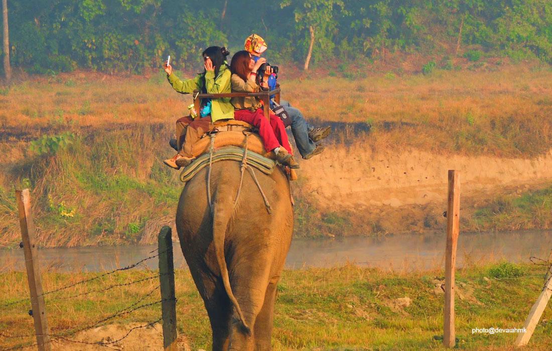 Chitwan Jungle Safari - Chitwan National Park