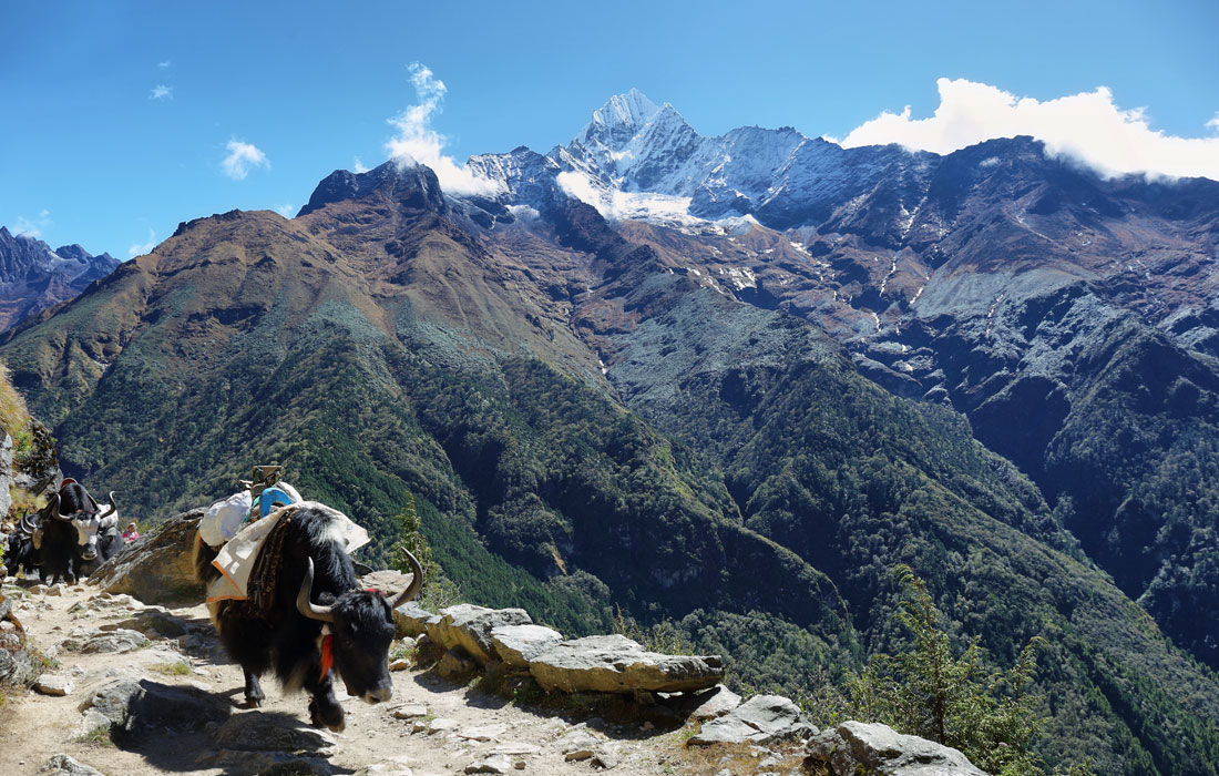 on the way to tengboche