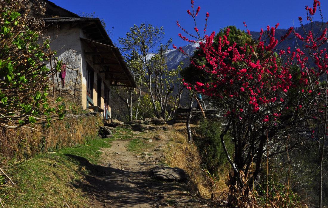 Sete village