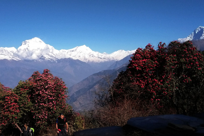 Nepal Trek and Bhutan Cultural Tour